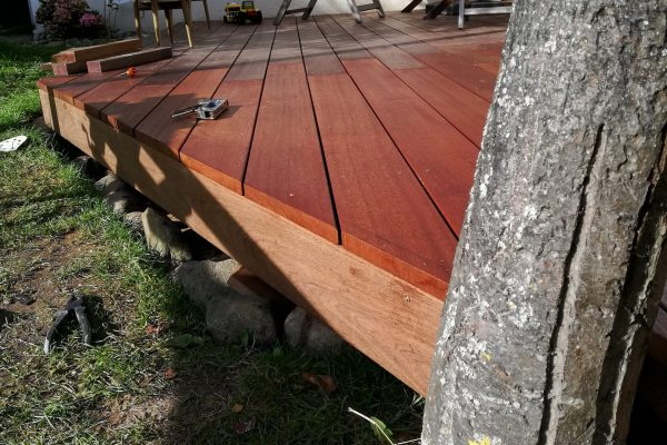 Holzterrassen - Bäume müssen nicht zwangläufig weichen