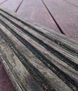 Algenbildung im Profil von geriffelten Terrassendielen